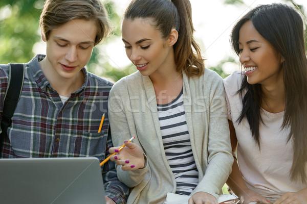 Zdjęcia stock: Grupy · młodych · uśmiechnięty · studentów · za · pomocą · laptopa