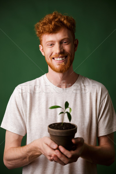 Cheerful handsome redhead bearded young hipster, holding potted  Stock photo © deandrobot