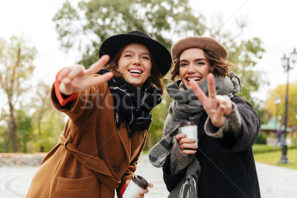 Portrait of two smiling girls dressed in coats Stock photo © deandrobot