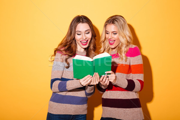 Portrait of two happy girls dressed in sweaters reading Stock photo © deandrobot