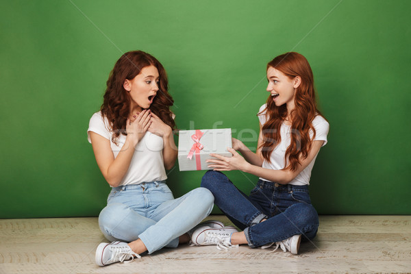 Portrait of two happy young redhead girls sitting on a floor Stock photo © deandrobot