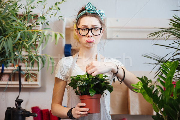 Sad woman florist holding green plant in flowerpot at shop Stock photo © deandrobot