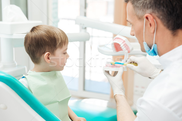 Dentist educating little boy about brushing teeth in clinic Stock photo © deandrobot