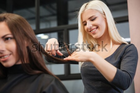 Woman discussing hairstyling with her hairdresser in hairdressing salon Stock photo © deandrobot