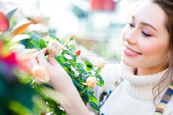 Kadın bahçıvan bakıyor Stok fotoğraf © deandrobot