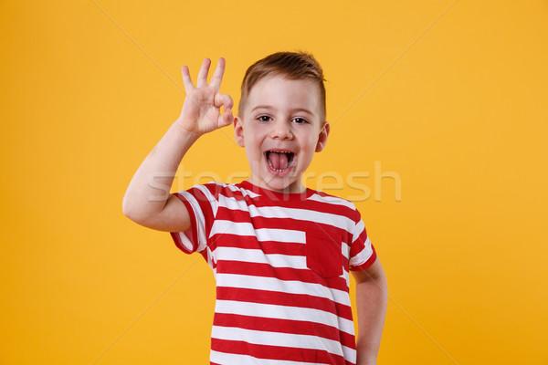Izgatott kicsi fiú áll mutat oké Stock fotó © deandrobot