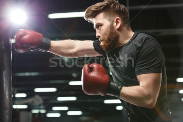 концентрированный красивый молодые сильный спортивных человека Сток-фото © deandrobot