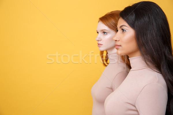 Oldalnézet kép koncentrált fiatal kettő hölgyek Stock fotó © deandrobot