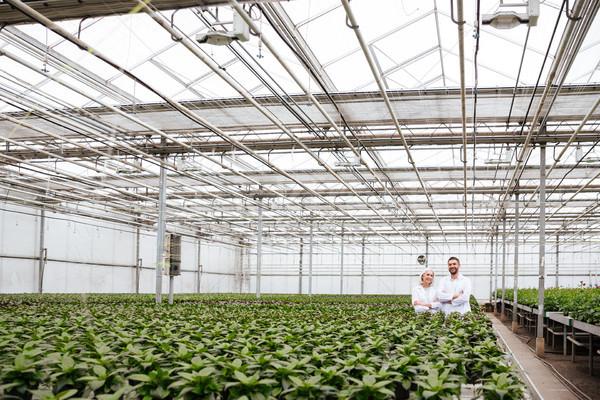 Mature happy gardeners looking camera in greenhouse Stock photo © deandrobot