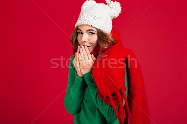 Pretty smiling brunette woman in sweater, funny hat and scarf Stock photo © deandrobot