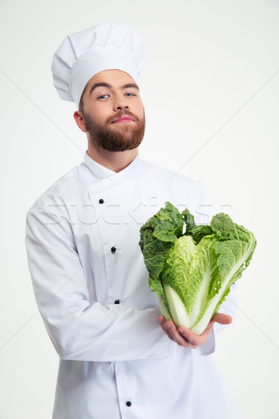 Portrait of a male chef cook holding cabbage  Stock photo © deandrobot