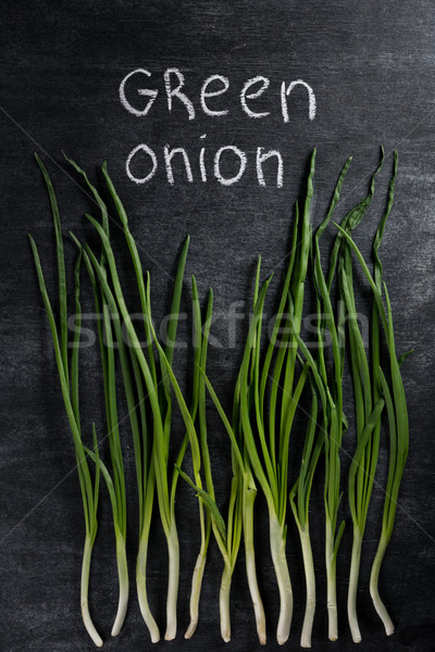 Image of green onion over dark chalkboard background. Stock photo © deandrobot