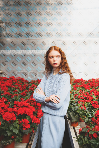 Girl standing in red blossom Stock photo © deandrobot