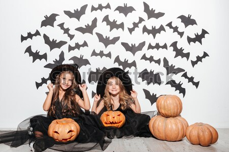 Two cheerful young women in leather halloween costumes Stock photo © deandrobot