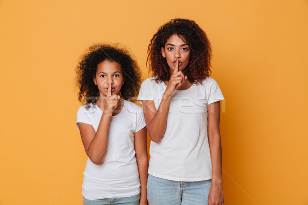 Portrait of a two pretty afro american sisters Stock photo © deandrobot