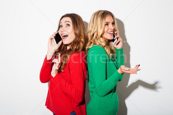 Ritratto due felice ragazze parlando Foto d'archivio © deandrobot