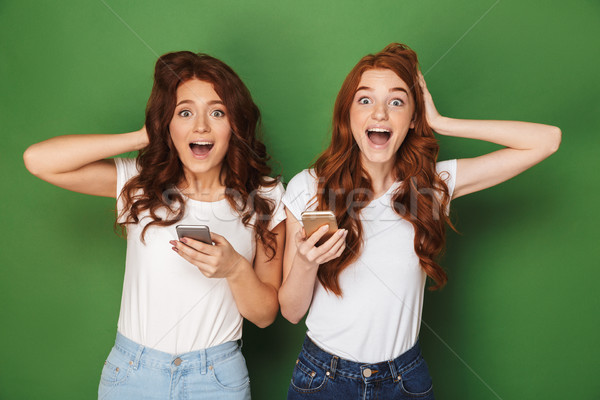 Portrait of two joyful women with ginger hair looking at camera  Stock photo © deandrobot