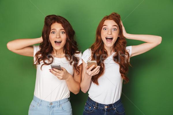 портрет два радостный женщины имбирь волос Сток-фото © deandrobot