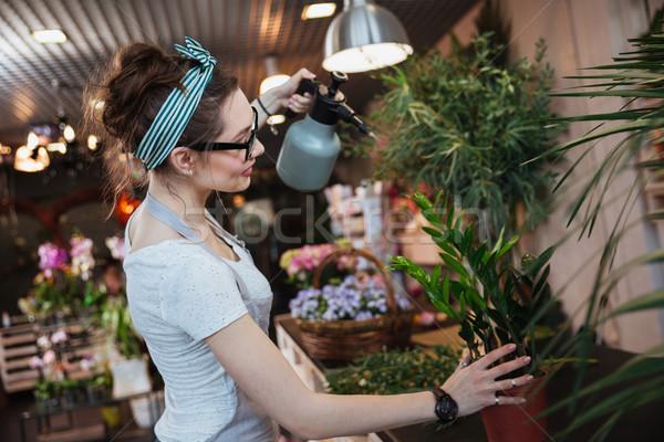 Stock fotó: Nő · virágárus · locsol · növények · víz · virágüzlet
