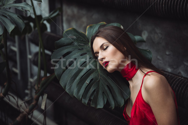 Model broeikas rode jurk poseren plant Stockfoto © deandrobot