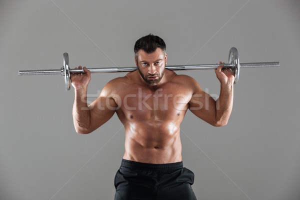 Portrait concentré fort torse nu Homme bodybuilder Photo stock © deandrobot