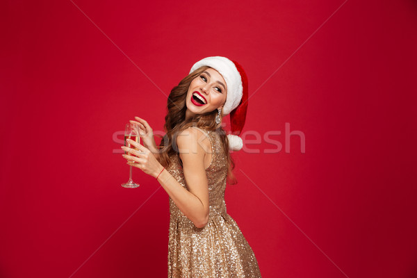 肖像 美しい 笑顔の女性 クリスマス 帽子 ドレス ストックフォト © deandrobot