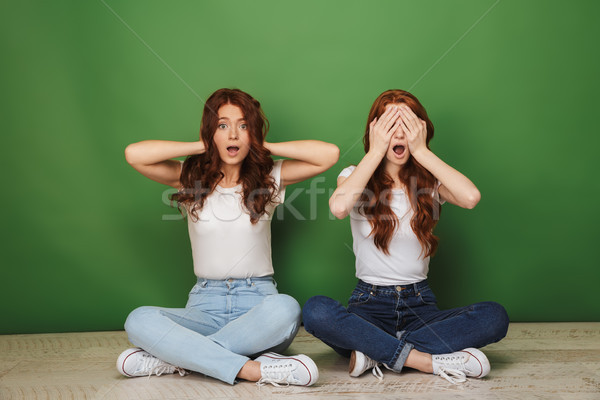Retrato dois jovem meninas Foto stock © deandrobot