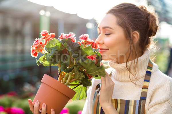 Inspired woman florist smelling flowers of begonia in greenhouse  Stock photo © deandrobot