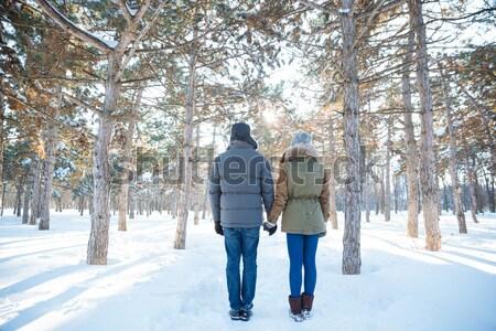 Stok fotoğraf: Güzel · mutlu · çift · ayakta · kış · park