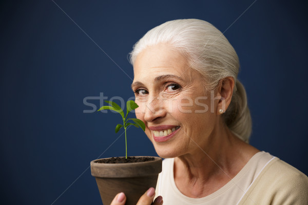 Close-up photo of happy aged woman showing young plant in the sp Stock photo © deandrobot
