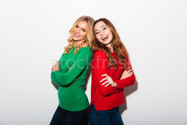 Retrato dos sonriendo ninas pie atrás Foto stock © deandrobot