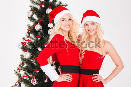 Sisters twins  holding present and decorating Christmas tree  Stock photo © deandrobot
