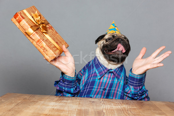 Excited happy pug dog with man hands holding gift  Stock photo © deandrobot