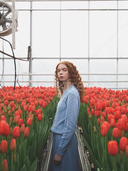 Girl between red tulips Stock photo © deandrobot