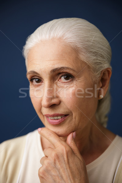 Close-up portrait of beautiful elderly woman with silver hair, h Stock photo © deandrobot