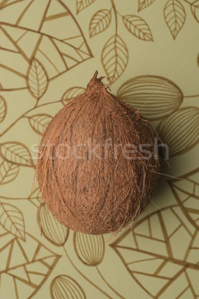 Kokosowe owoców odizolowany kwiatowy Zdjęcia stock © deandrobot
