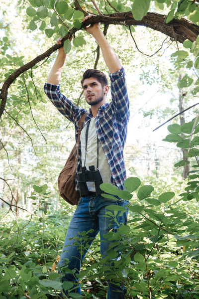 Man clinging to a tree Stock photo © deandrobot