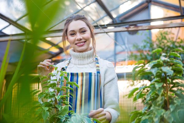 Sorrindo jardineiro em pé sorridente mulher jovem listrado Foto stock © deandrobot
