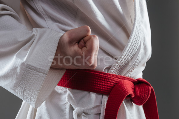 Cropped picture of handsome sportsman practice in karate Stock photo © deandrobot