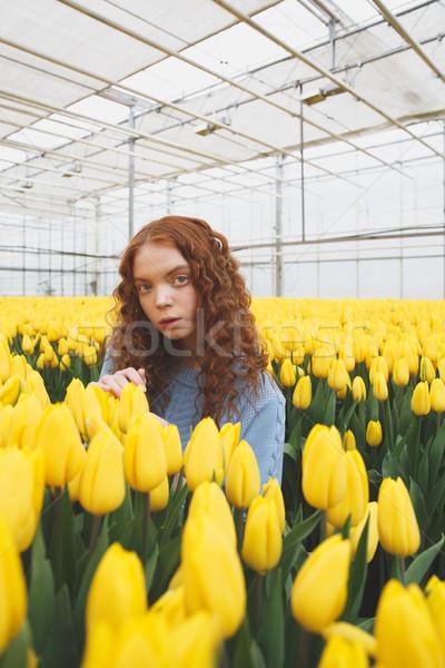 Lány áll rendkívüli néz kamera citromsárga Stock fotó © deandrobot