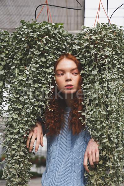 Portré lány növényzet másfelé néz rejtőzködik nő Stock fotó © deandrobot