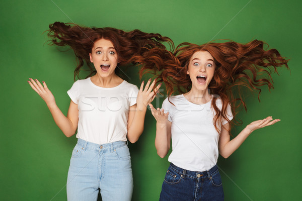Portrait of two excited young redhead girls Stock photo © deandrobot
