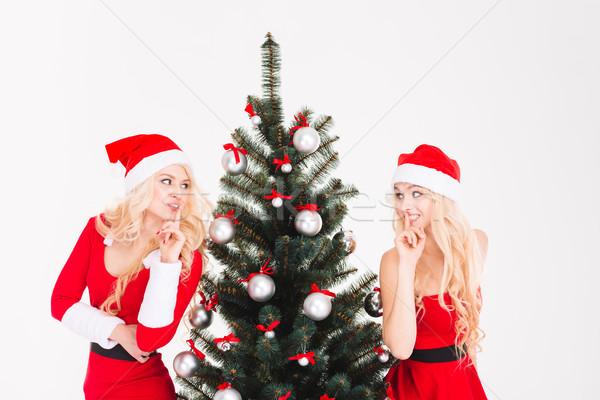 Dois irmãs silêncio assinar Foto stock © deandrobot