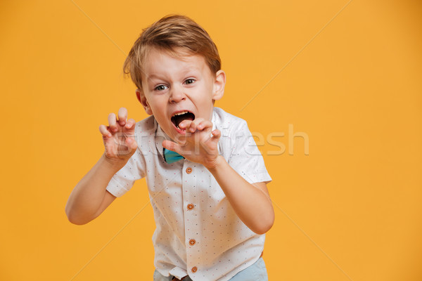 Emotional screaming little boy. Stock photo © deandrobot