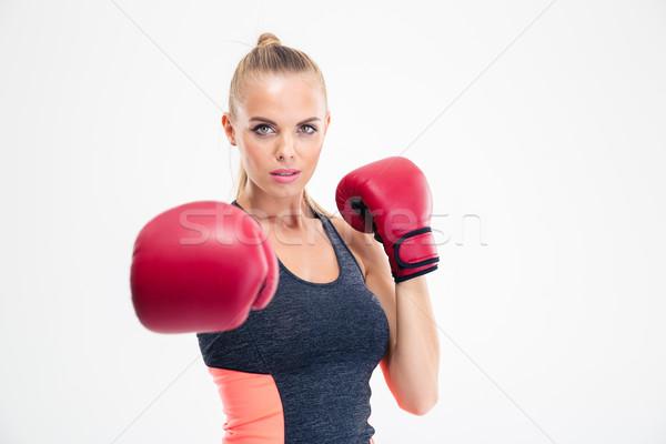 Mulher câmera luvas de boxe retrato encantador isolado Foto stock © deandrobot
