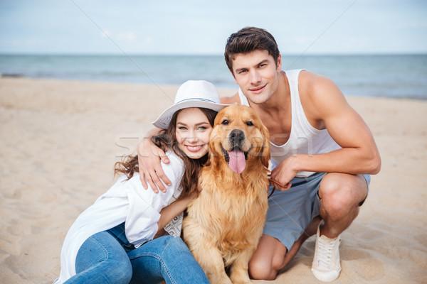 小さな 魅力的な カップル 犬 座って ビーチ ストックフォト © deandrobot