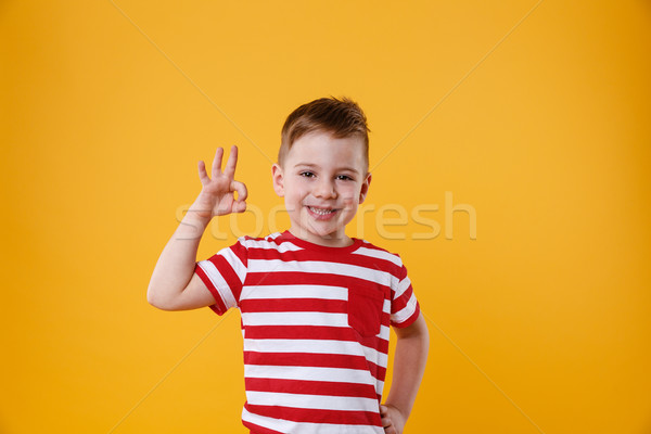 Portre sevimli küçük erkek çocuk Stok fotoğraf © deandrobot