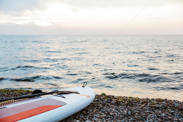 Kayak on the beach near sea water Stock photo © deandrobot