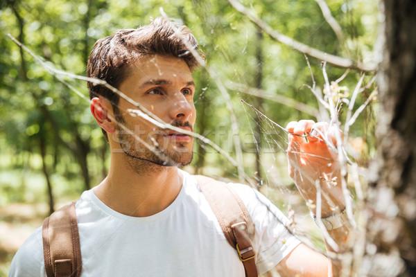 Stałego patrząc pajęczyna lasu przystojny młody człowiek Zdjęcia stock © deandrobot