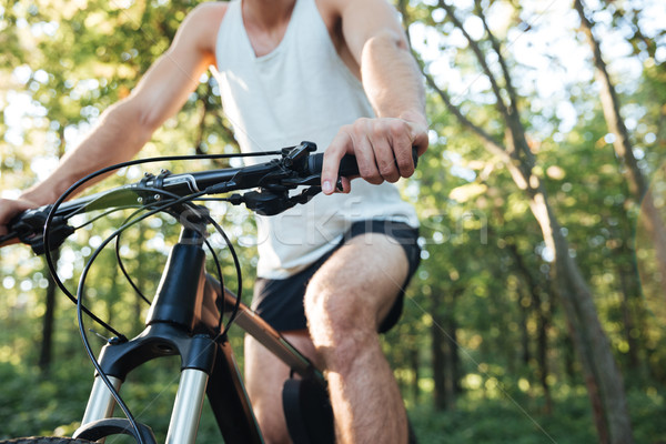 Cropped cyclist in forest Stock photo © deandrobot